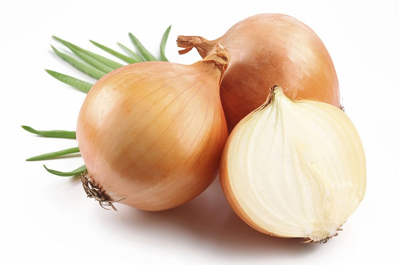 Onion containing only 13 calories per 100g