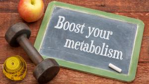 Metabolism word on blackboard
